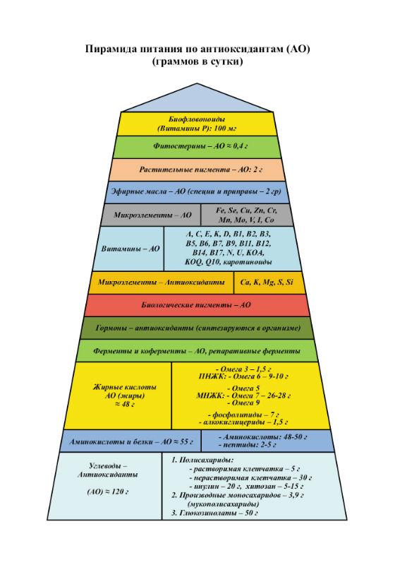 Пирамида по антиоксидантам 600- 800.jpg